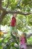 Lekker klimmen en klauteren